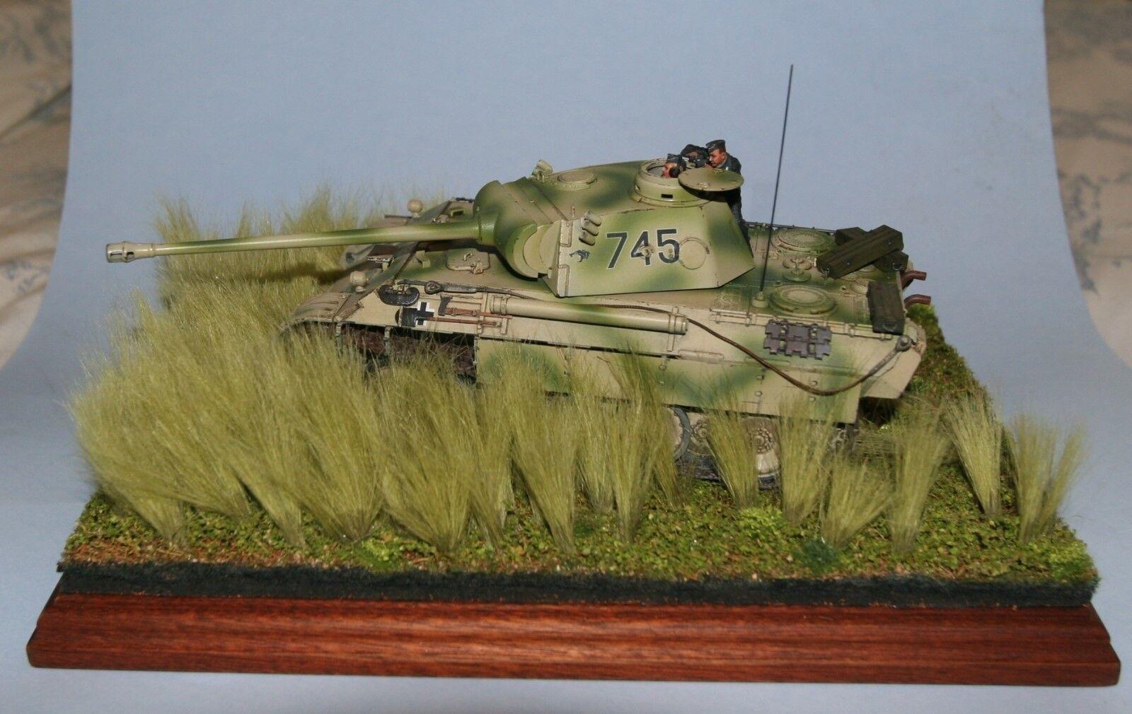 Tamiya pz. Kpfw V Panther Ausf. D en Kursk  2 Crew y Pro construido