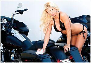 Bikini poster Harley