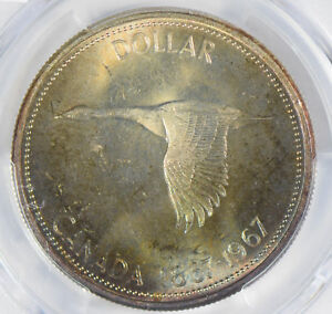 Canada-1967-Dollar-silver-PCGS-MS64-stunning-blue-golden-toning-PC0299-combine-s