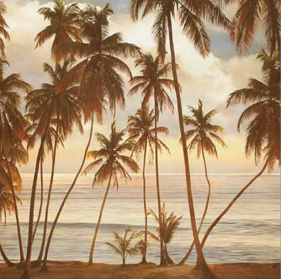 John Seba  Palms on the Water I Keilrahmen-Bild Leinwand Palmen Meer