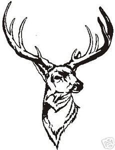 "WHITE TAIL DEER HEAD  WILDLIFE DECAL 10/"" X 8/""  WHITE"