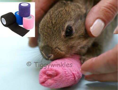 Tiggywinkles BANDAGES FOR WILDLIFE CASUALTIES CHARITY VIRTUAL GIFT