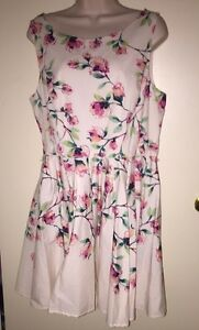 LC-LAUREN-CONRAD-Women-039-s-Floral-Fit-amp-Flare-Sleeveless-Dress-034-MAGNOLIAH-034-16-NWT
