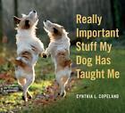 Really Important Stuff My Dog Has Taught Me von Cynthia L. Copeland (2014, Taschenbuch)