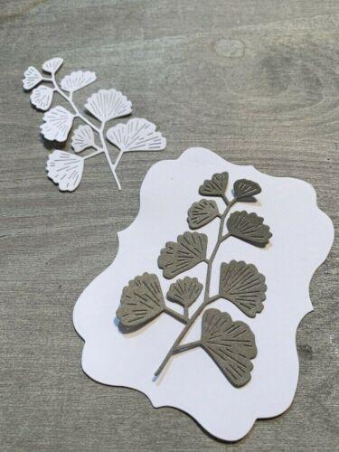 Stanzschablone//cutting esto gingko gingkozweig rama flores de 5,5 x 8,5 cm