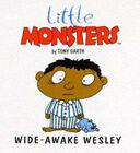 Wide-awake Wesley by Tony Garth (Paperback, 1997)