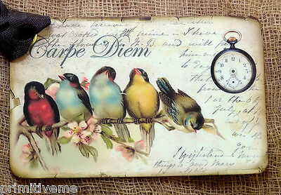 Hang Tags  CARPE DIEM BIRD TAGS or MAGNET #107  Gift Tags