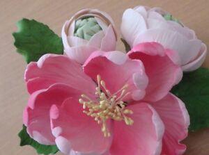 Miraculous Hot Pink Peony Ranunculus Sugar Flower Wedding Birthday Cake Funny Birthday Cards Online Overcheapnameinfo