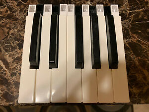 Replacement-keys-for-Roland-JD-800-D-70-U-20-synthesizers-refurbished