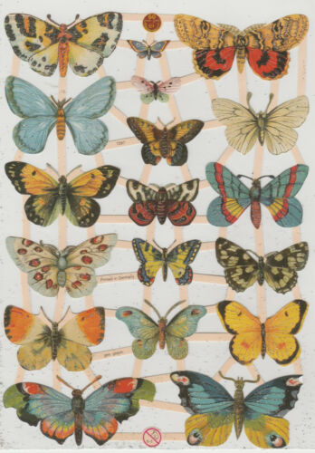 Chromo EF Découpis Papillon 7297 Embossed Illustrations Butterfly