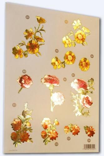 Flowers Carnation Reflections 758 R Craft UK A4 Die Cut Decoupage