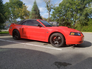 2002 Shelby Mustang GT