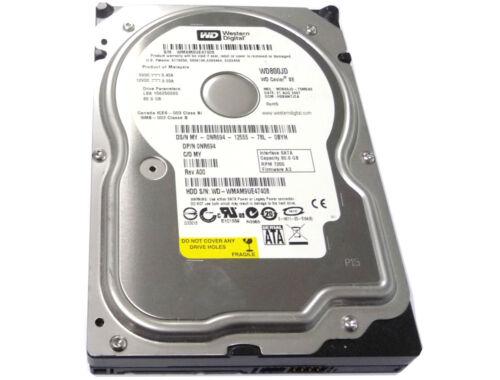 """1 of 1 - Western Digital 80GB 7200RPM SATA 3.5"""" Internal Desktop Hard Drive - WD800JD"""