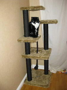Image Is Loading Plans To Build Your Very Own Cat Tree