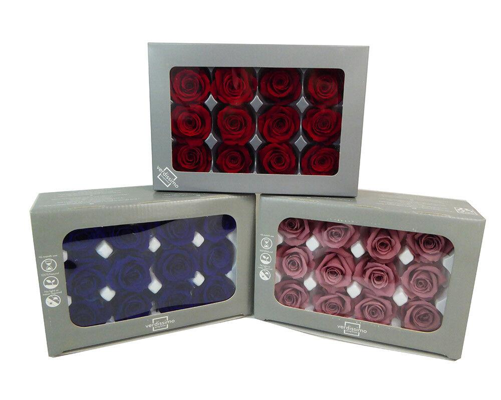 12 Rosa Natürliche stabilisiert, d. 4 cm Dekoration Geschenk Valentinstag   Elegant und feierlich    Haltbar