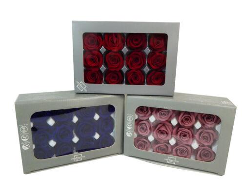 12 Rose Naturali Stabilizzate D.4 cm decorazione regalo san valentino