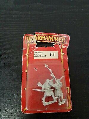 Ambizioso Warhammer Bretonnian Squire Gruppo Di Comando-mostra Il Titolo Originale