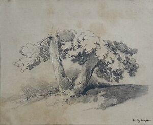 Jules Coignet (1798 - 1860) - tronchi-MATITA DISEGNO-FIRMATO