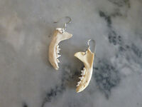 Mink Jaw Bone Earrings - Real Mink Jaw With Teeth Attached