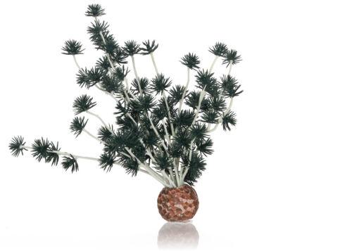 Oase Biorb Bonsai Bola Negro 18cm Ornamento de Acuario Tanque Decoración Plantas