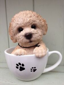 Details about Labradoodle In Teacup Indoor Outdoor Ornament Vivid Arts  £12 99