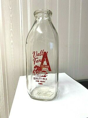 Vintage Square  Quart Milk Bottle Taz 1995 Warner Brothers