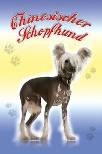Chinois-Schopfhund-Chien-Pancarte-en-Tole-Signe-Metal-Etain-20-X-30-cm-CC0334