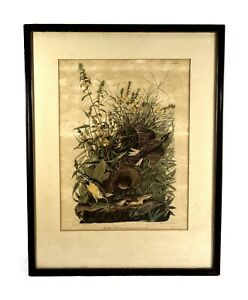 Antique-Original-John-James-Audubon-Lithograph-Print-Meadowlark-1832
