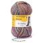 REGIA 4-fädig  color 50g Sockenwolle Farbe 04068 flowerfield color