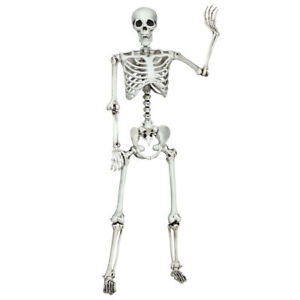 5-4ft-Halloween-Skeleton-Life-Size-Realistic-Full-Body-Hang-w-Movable-Joints