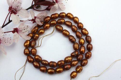 Oval 5-6mm Natürlich Zuchtperlen Strang Süßwasser Perle Schmuck Kette Halskette