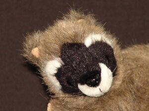 1995 Smithsonian Institution Backyard Lifelike Baby Raccoon Plush