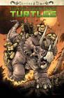 Teenage Mutant Ninja Turtles: Turtles in Time by Paul Allor, Erik Burnham (Paperback, 2014)