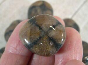 1-Polished-Chiastolite-Cross-Stone-Reiki-Wicca-Protection-Grounding-25667E