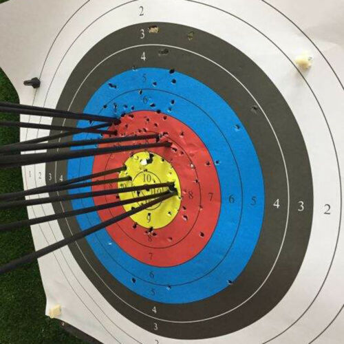 """Archery 28/""""30/""""31/""""Pure Carbon Arrows Hunting Spine 300 400 Replaceable arrowheads"""