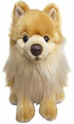 Plüschtier Süß Sammlerstück Realistisch Looking 30.5cm Plüsch Hund Zwergspitz