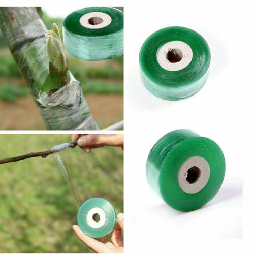 Grafting Tape Stretchable Self-adhesive For Garden BX Tree 2cm*100m E6Y5