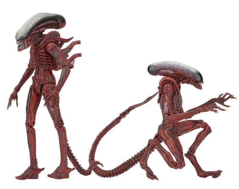 Großer mann und hund alien - kasten 2 abbildung aktion 20cm aliens v ö lkermord original neca