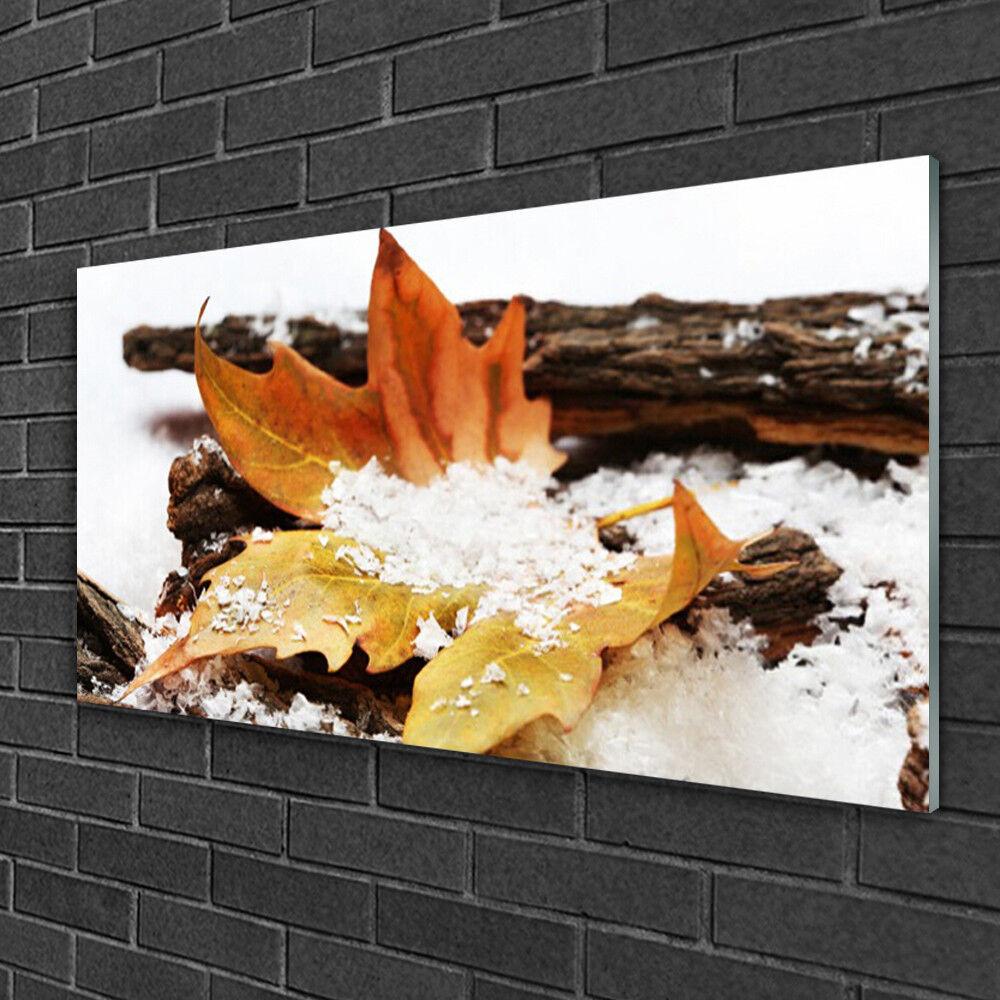 Tableau sur verre Image Impression 100x50 Floral Feuille