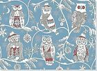 Santa Owls Boxed Christmas Cards (greeting Cards) by Peter Pauper Press 2010