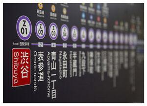 Aoyama Itchome On Subway Map.Details About Tokyo Japan Shibuya Station Hanzomon Line Subway Map Poster Print