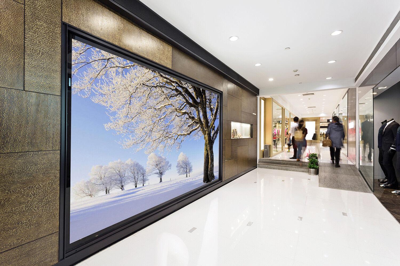 3D White Trees 48 Wallpaper Murals Wall Print Wallpaper Mural AJ WALL AU Lemon