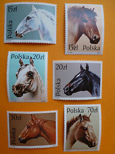 LOT-5228-TIMBRES-STAMP-FAUNE-POLOGNE-POLSKA-ANNEE-1989