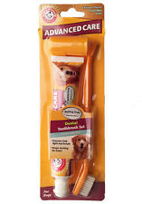 Arm & Hammer Advanced Care Dental Toothbrush Toothpaste Dogs Chicken Fresh Mint