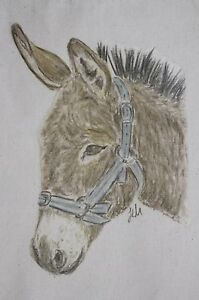 Donkey-and-Horse-bags-Cotton-or-Canvas-3-sizes-and-4-different-designs