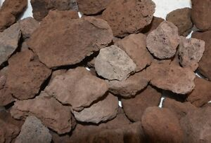 Steine Für Gasgrill : Stück lava steine cm gasgrill elektrogrill terrarium