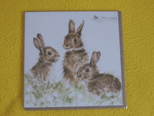 1 x HASEN Klappkarten Umschlag Wrendale Designs Grußkarten BORN FREE bunny Tiere