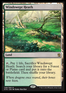 1x-NM-Mint-English-Regular-Windswept-Heath-Khans-of-Tarkir