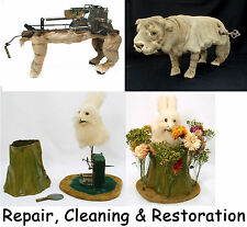 Automaton, Nodder and Whistler Repair and Restoration Service located in USA