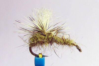 1 x Mouche Peche Sèche Imago Cerise  H14//16 BARBLESS fly trout sans ardillon